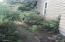 1622 Praslin Street, Eugene, OR 97402 - Shade Garden1