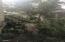 1622 Praslin Street, Eugene, OR 97402 - Shade Garden2