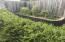 1622 Praslin Street, Eugene, OR 97402 - Vegetable Garden