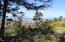 700 Lookout Drive, Waldport, OR 97394 - Waldport_Oceanview_Jessal_9