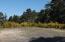 700 Lookout Drive, Waldport, OR 97394 - Waldport_Oceanview_Jessal_12