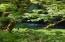 5385 Salmon River Hwy, Otis, OR 97368 - IMG_2409