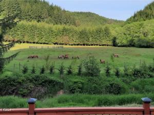 1173 Sams Creek Rd, Logsden, OR 97357 - Elk