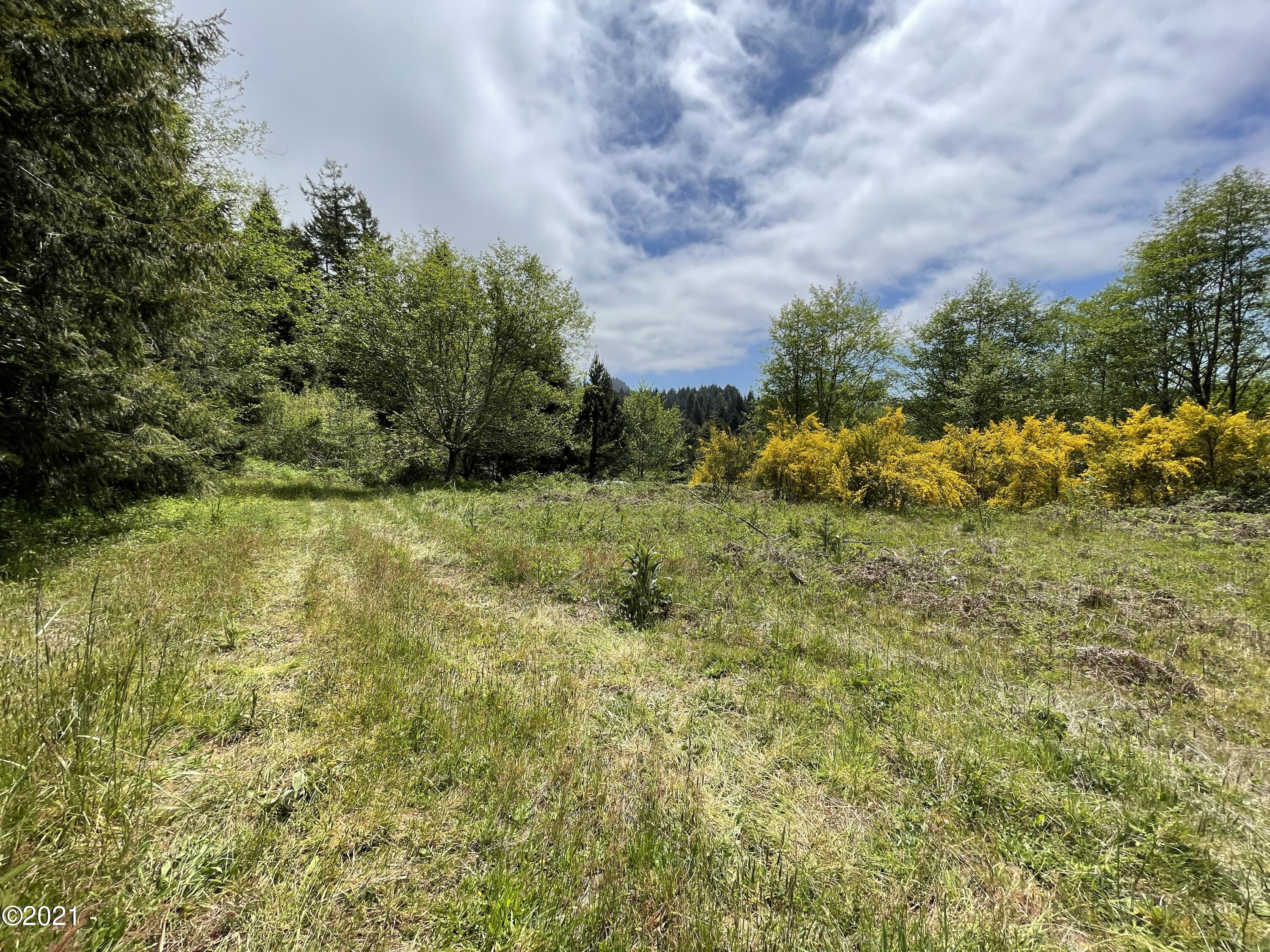 19550 Blanchard Rd, Cloverdale, OR 97112 - pasture #1