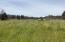 227 N Westview Circle, Otis, OR 97368 - Grassy lot