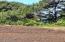 TL3100 Sitka Ridge Ct., Waldport, OR 97394 - 20210614_111240