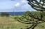 1048 Hwy 101 N, Yachats, OR 97498 - Ocean close up