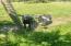 9687 Logsden Rd, Blodgett, OR 97326 - Goats