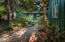1365 SE Virginia Pl, Waldport, OR 97394 - Walking Path From Home