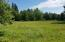 265 Siletz River, Siletz, OR 97380 - view from swan