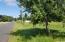 265 Siletz River, Siletz, OR 97380 - View east on swan