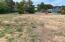 1106-1120 Tara Lane, Waldport, OR 97394 - Septic Area