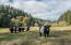3166 Yachats River Rd., Yachats, OR 97498 - Barn