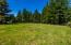 2145 E Alsea Hwy, Waldport, OR 97394 - Meadow