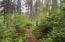 1694 SE Mast Ave, Lincoln City, OR 97367 - Small Forest in back yard