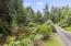 430 SW Wakonda Beach Rd, Waldport, OR 97394 - Driveway and Pond