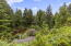 430 SW Wakonda Beach Rd, Waldport, OR 97394 - View From House