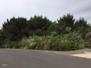 2010 NW Oceanic Loop, Waldport, OR 97394 - Lot seen from street