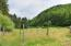 9687 Logsden Rd, Blodgett, OR 97326 - Fencing Field 1