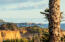 301 Otter Crest Dr, 250-251, Otter Rock, OR 97369 - View of lighthouse - Zoomed in