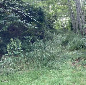 LOT 15 Tyee, Neskowin, OR 97149 - frontage without sign