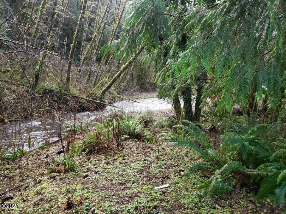 1363 N Bear Creek Rd, Otis, OR 97368 - Resized_20200202_111146