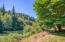 1642 Little Switzerland Rd, Tidewater, OR 97390 - View & river