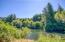 1642 Little Switzerland Rd, Tidewater, OR 97390 - Alsea River