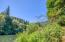 1642 Little Switzerland Rd, Tidewater, OR 97390 - View and River