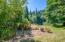 1642 Little Switzerland Rd, Tidewater, OR 97390 - Old berry patch