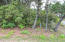 TL 2700 NW Sunahama Pl, Seal Rock, OR 97376 - wooded