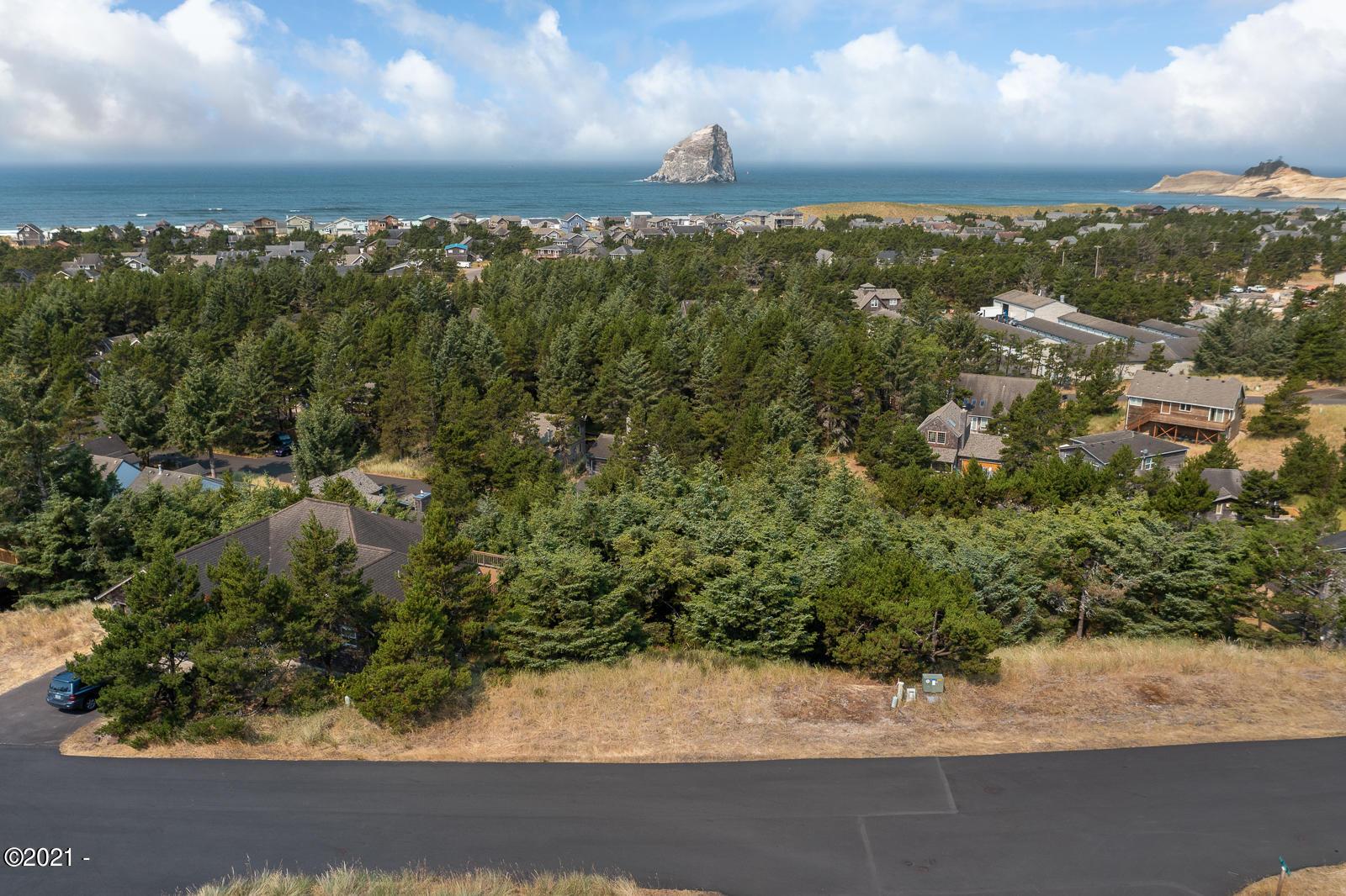 LOT  50 Nestucca  Ridge Road, Pacific City, OR 97135 - NestuccaRidgeLot50-02