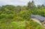 385 N Juniper Court, Rockaway Beach, OR 97136 - Wetlands Back Yard View-2