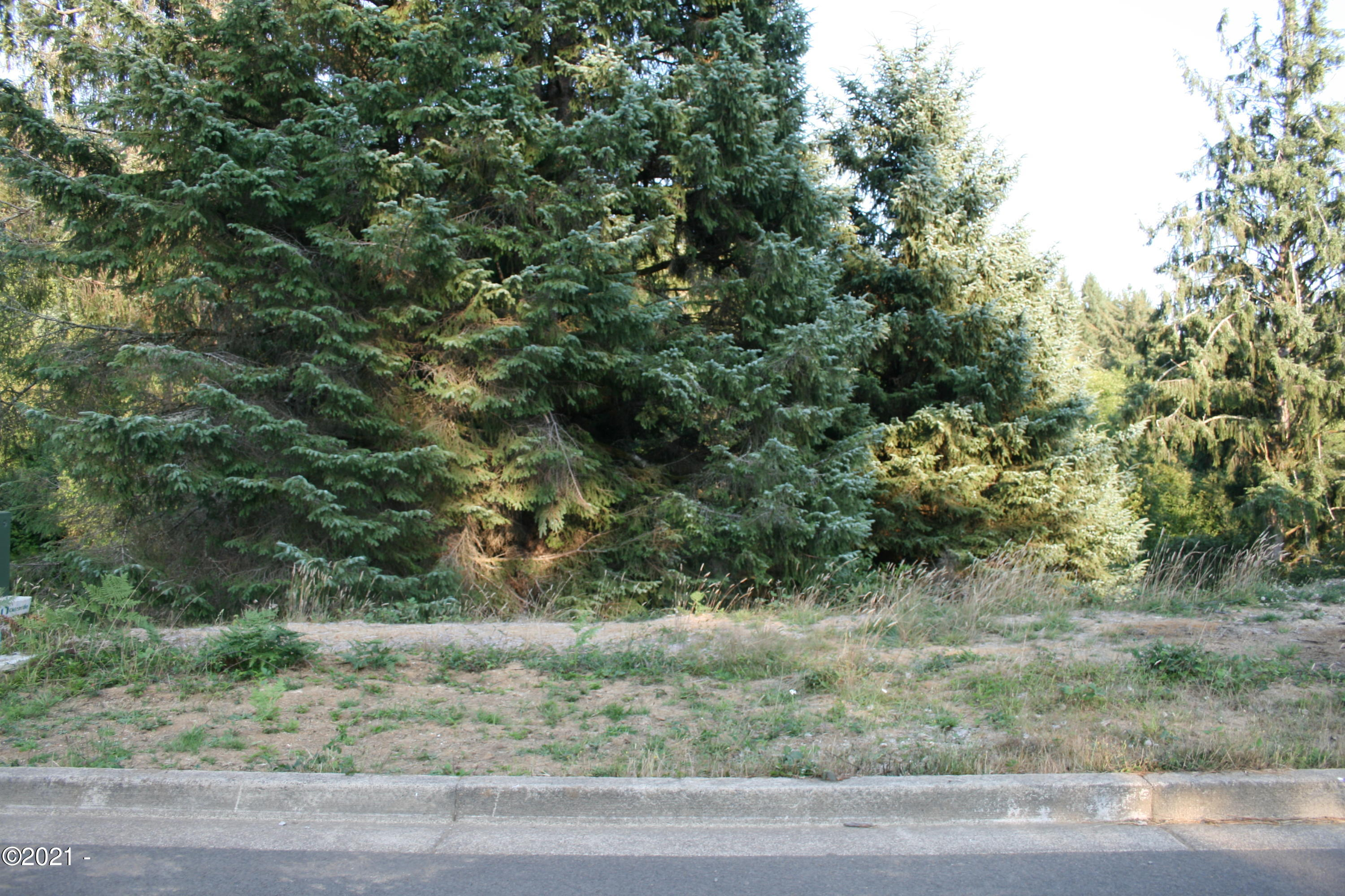 LOT 114 NE Voyage Way, Lincoln City, OR 97367 - Front of Lot