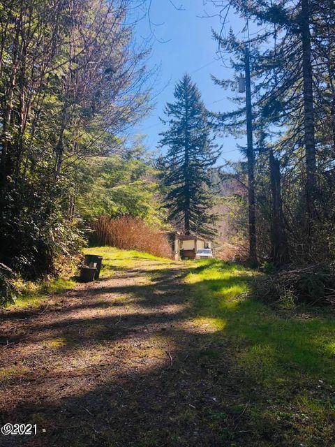 9343 S Schooner Creek Rd, Otis, OR 97368 - Looking at the homesite