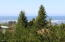 1420 SW Crest Cir, Waldport, OR 97394 - Ah.. The Views