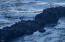 108 Sea Crest Ct, Otter Rock, OR 97369 - Eagle on Water