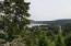 1423 NE High Meadows Dr., Waldport, OR 97394 - Trees