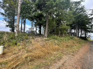 T/L 4000 SE Port Dr., Lincoln City, OR 97367 - Mountain & Partial Lake View Lot