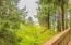 3670 Ridge Rd, Otis, OR 97368 - Home in the Woods :)