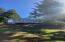 47830 Sorrel Ln, Neskowin, OR 97149 - MORE TREES