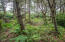 TL 2700 NW Sunahama Pl, Seal Rock, OR 97376 - middle of lot