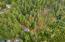 LOT 498 Spruce Burl Ln, Gleneden Beach, OR 97388 - 498SpruceBurl-04