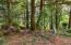 LOT 498 Spruce Burl Ln, Gleneden Beach, OR 97388 - 498SpruceBurl-07