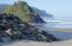48260 Hawk Dr, Neskowin, OR 97149 - Neskown Beach 1