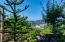 340 SW Pacific View St, Waldport, OR 97394 - ShadyCove-15