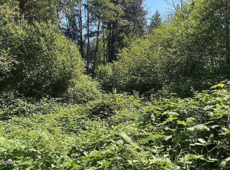 34 N Labsch St, Otis, OR 97368 - Country Setting