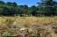 2801 NW Bayshore Loop, Waldport, OR 97394 - SE view