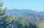 1123 SW 10th St, Lincoln City, OR 97367 - Mt. Views