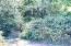 TL#500/600 E Alsea Hwy, Waldport, OR 97394 - Johnson